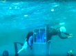 Underwater egress training for sale